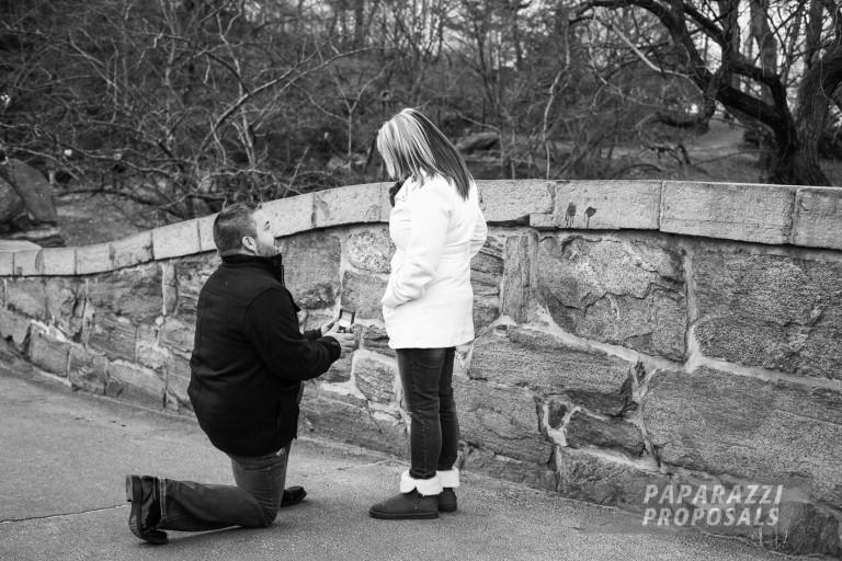 Proposal Ideas Central Park Gapstow Bridge Proposal Nyc Chuck