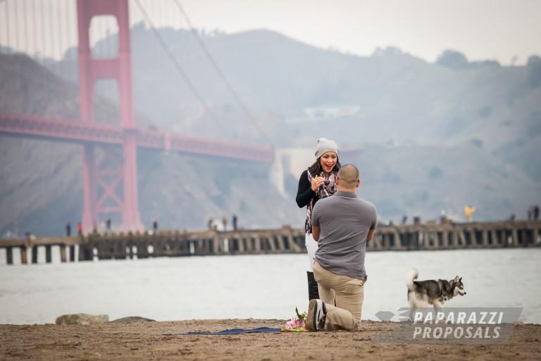 California Paparazzi Proposals