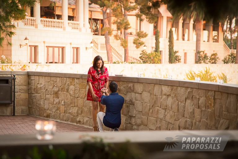 Great Proposal Ideas Anand Alishas Engagement Newport Ca
