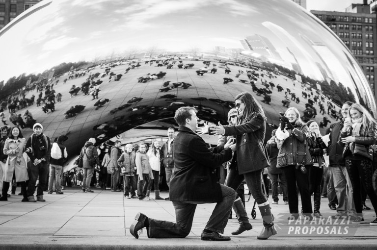 Chicago Paparazzi Proposals