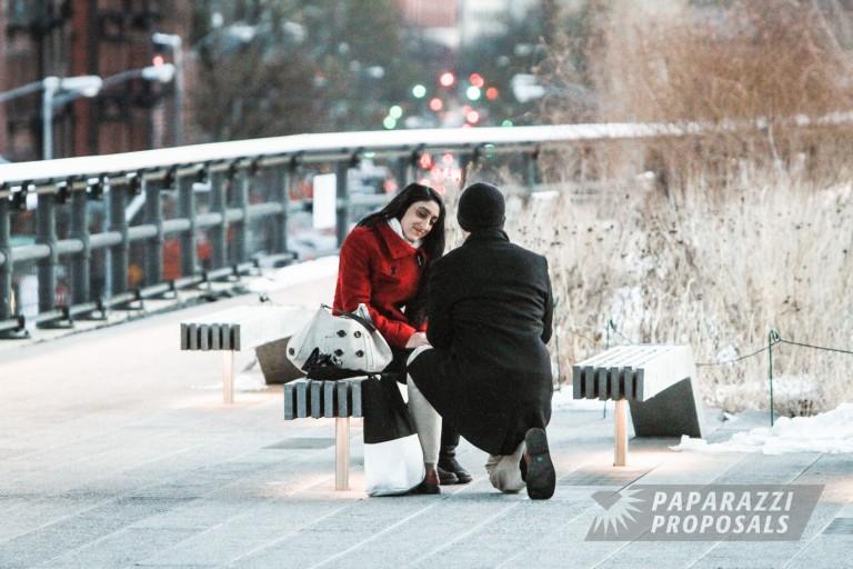 Daniel S Winter Highline Proposal New York City