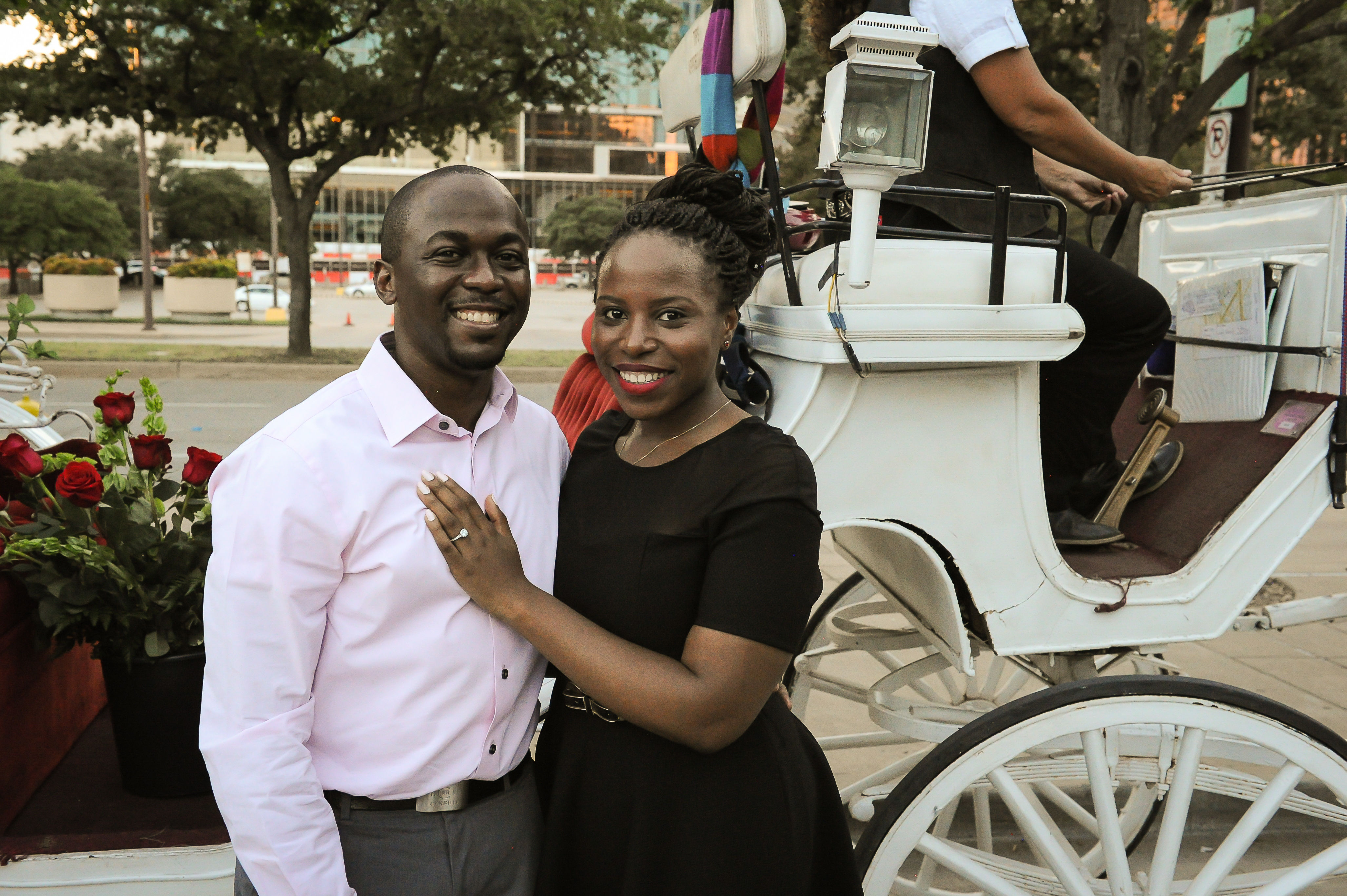 Horse and Carriage Proposal