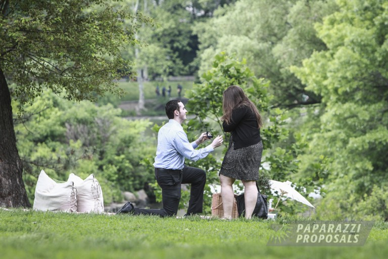 Nyc Proposal Ideas Central Park Perfect Picnic