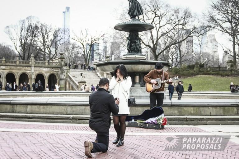 Central Park Paparazzi Proposals