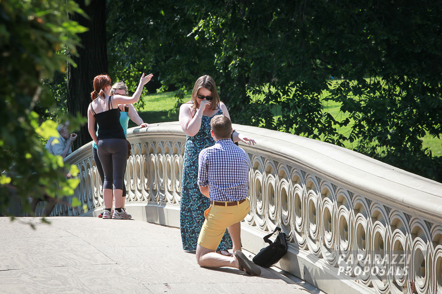 Nick And Elizabeths Bow Bridge Paparazzi Proposal In