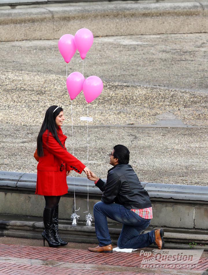 Sid And Radhika S New Year S Eve Central Park Proposal