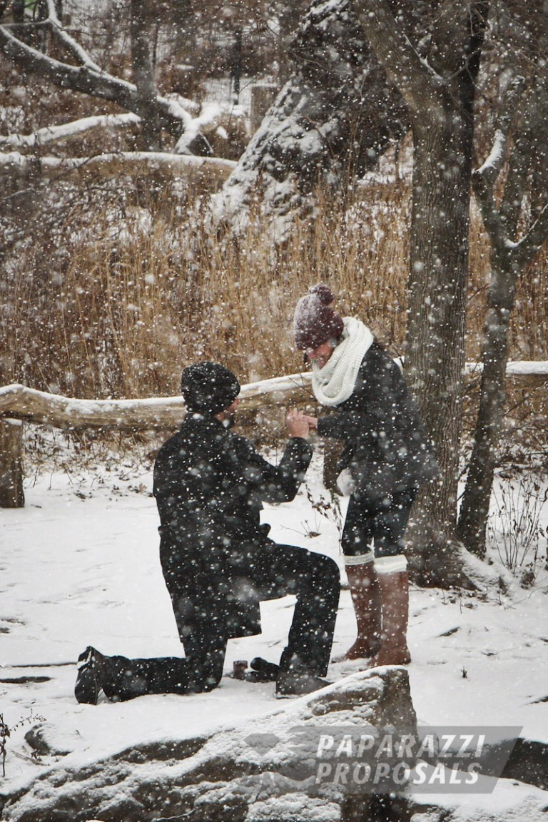 Peter And Catherines Gorgeous Snowy Central Park Proposal