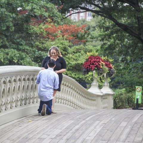 Chicago Proposal Ideas Garfield Park Conservatory