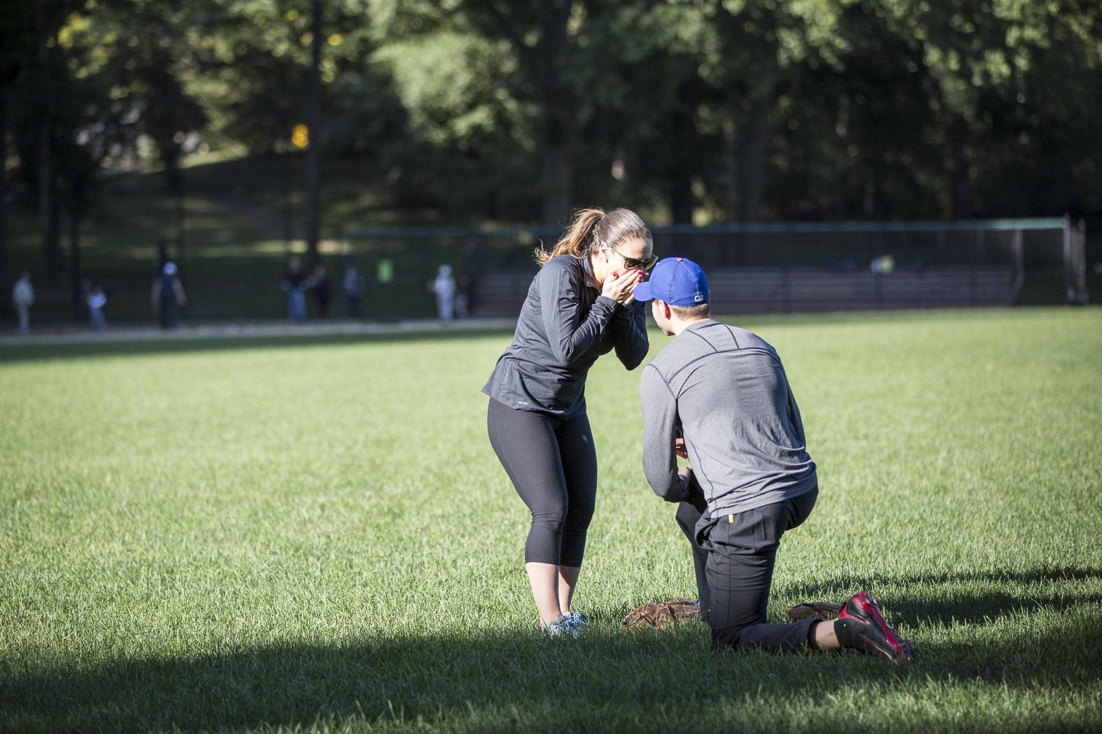 Central Park Baseball Proposal