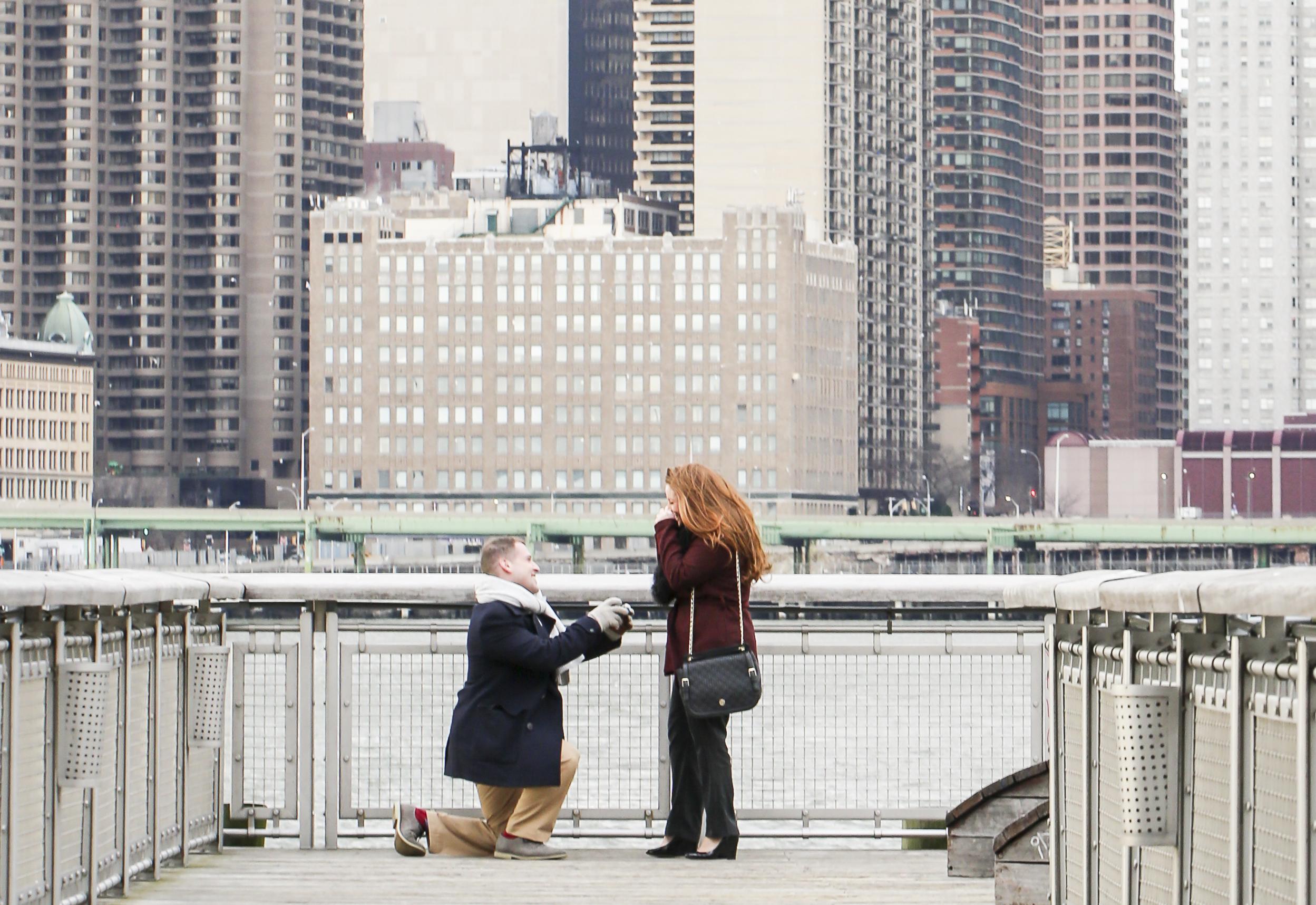 Long Island City Proposal