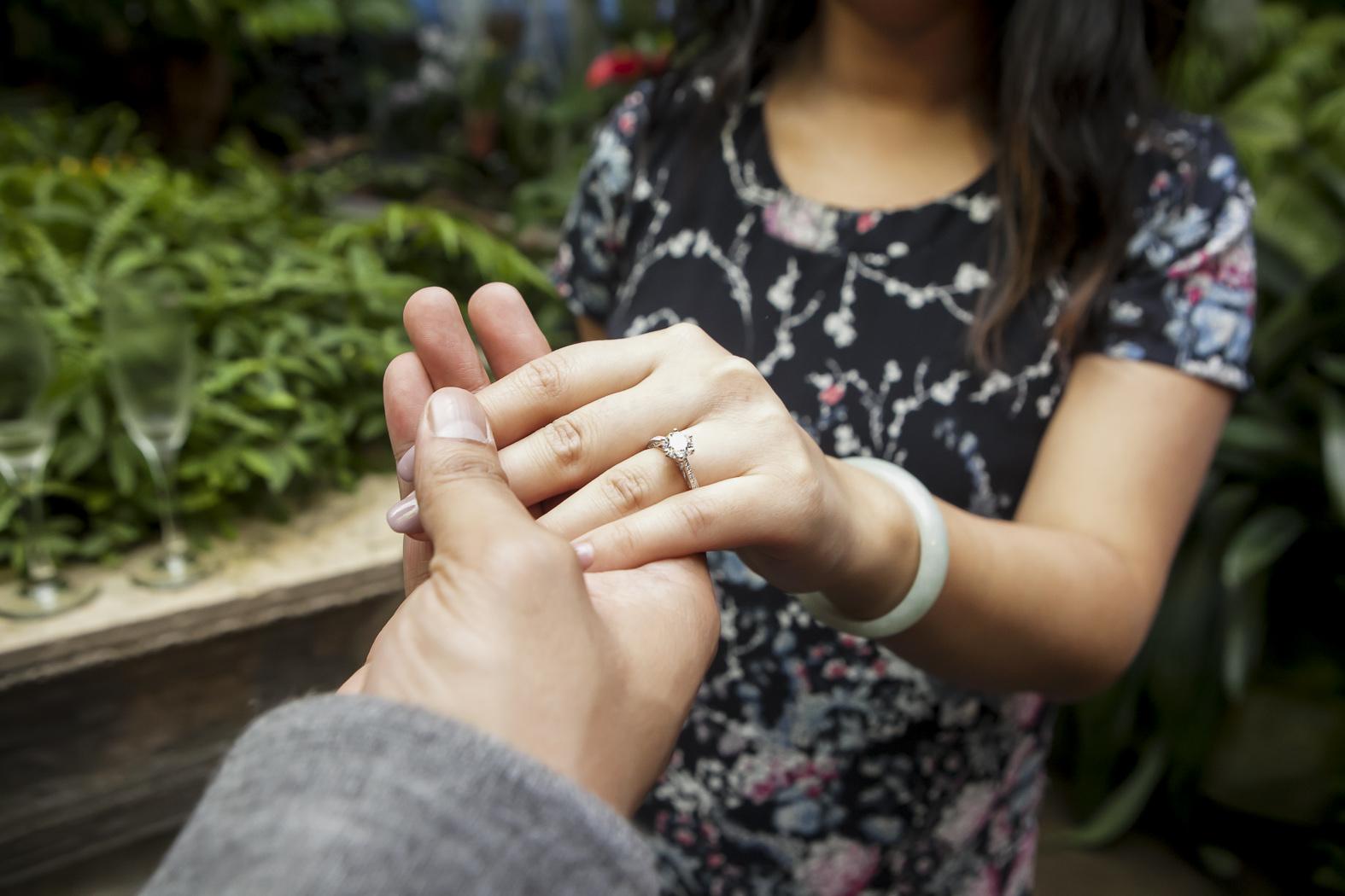 Botanical Garden Proposal