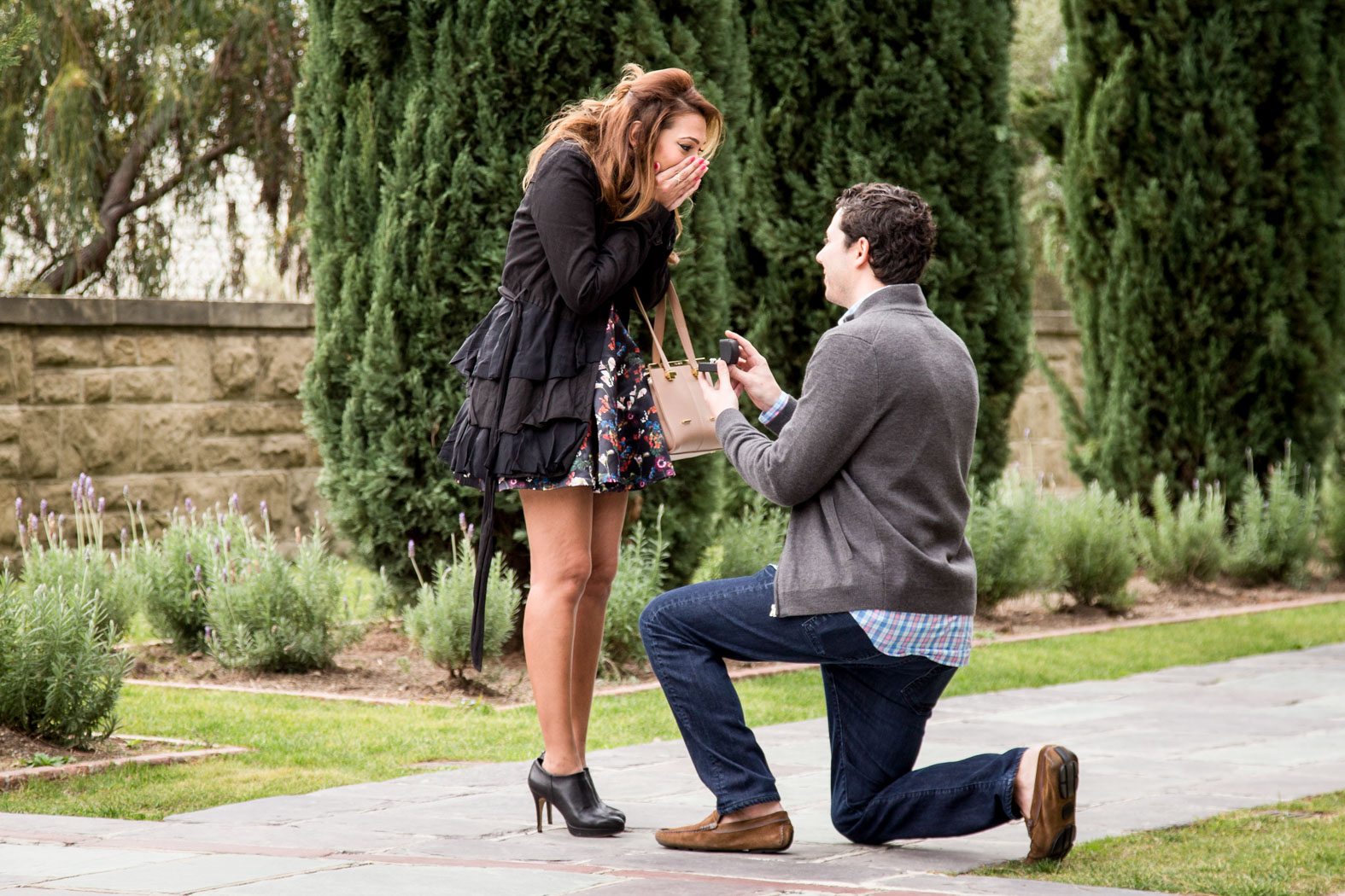 Los Angeles engagement proposal