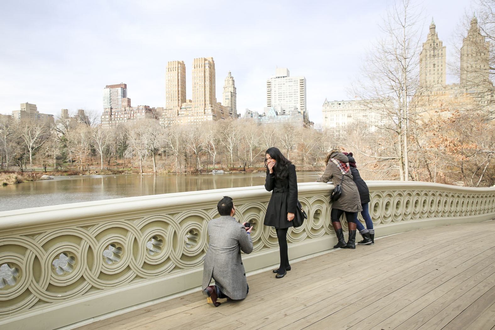 Central Park Bow Bridge Proposal