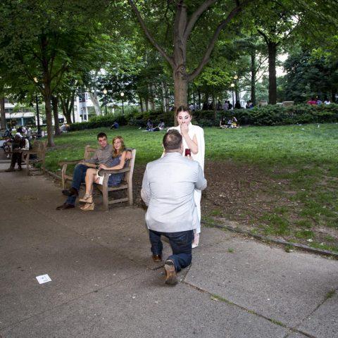 Five Stunning Central Park Proposal Ideas