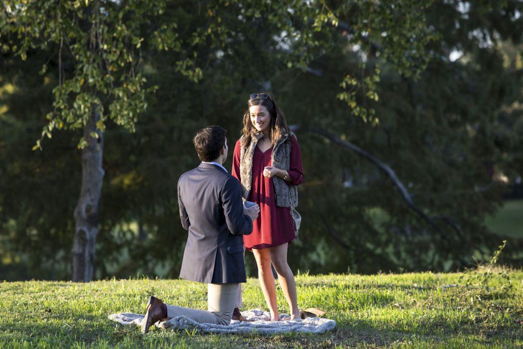 Dallas engagement proposal ideas