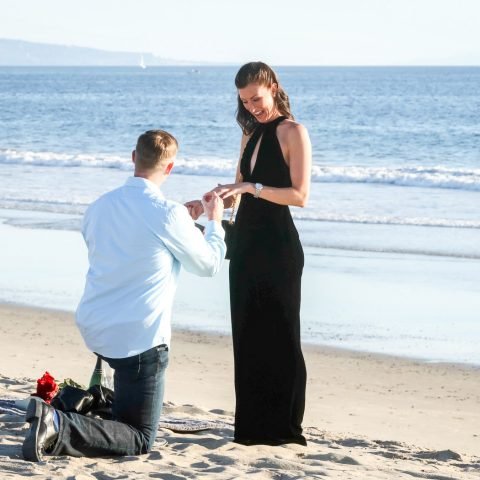 Places To Propose In New York
