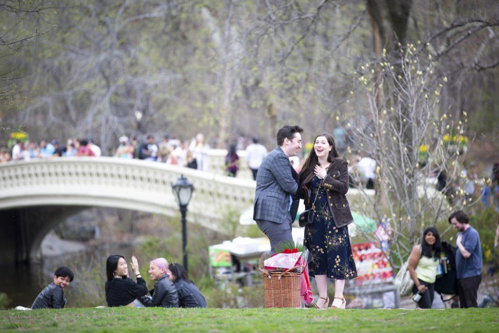 Central Park Picnic Proposals