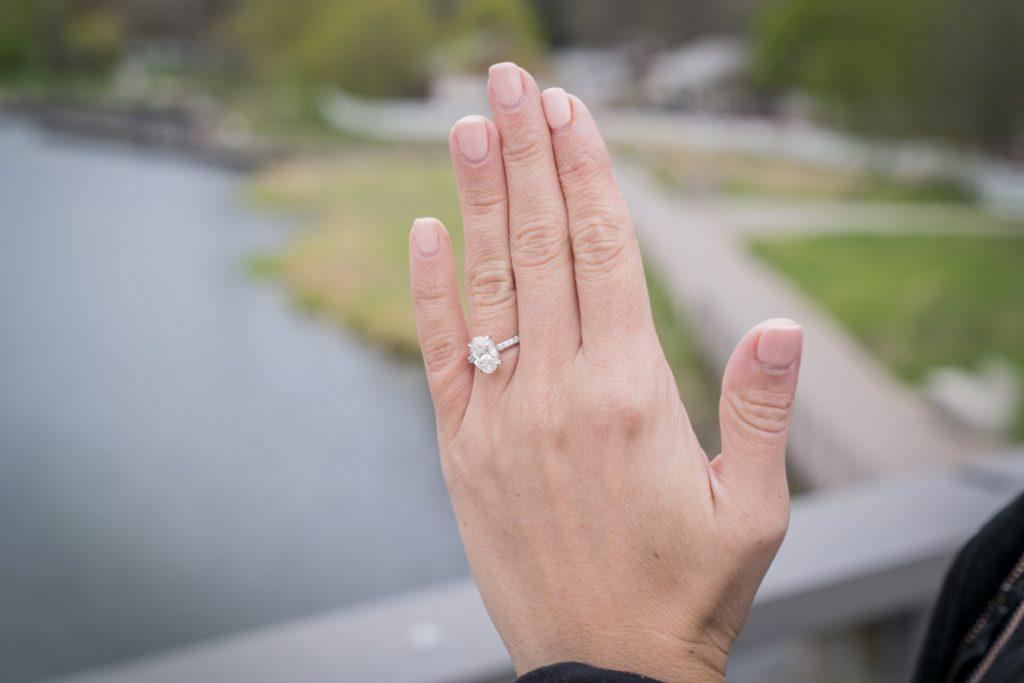 Lincoln Park Engagement Proposals