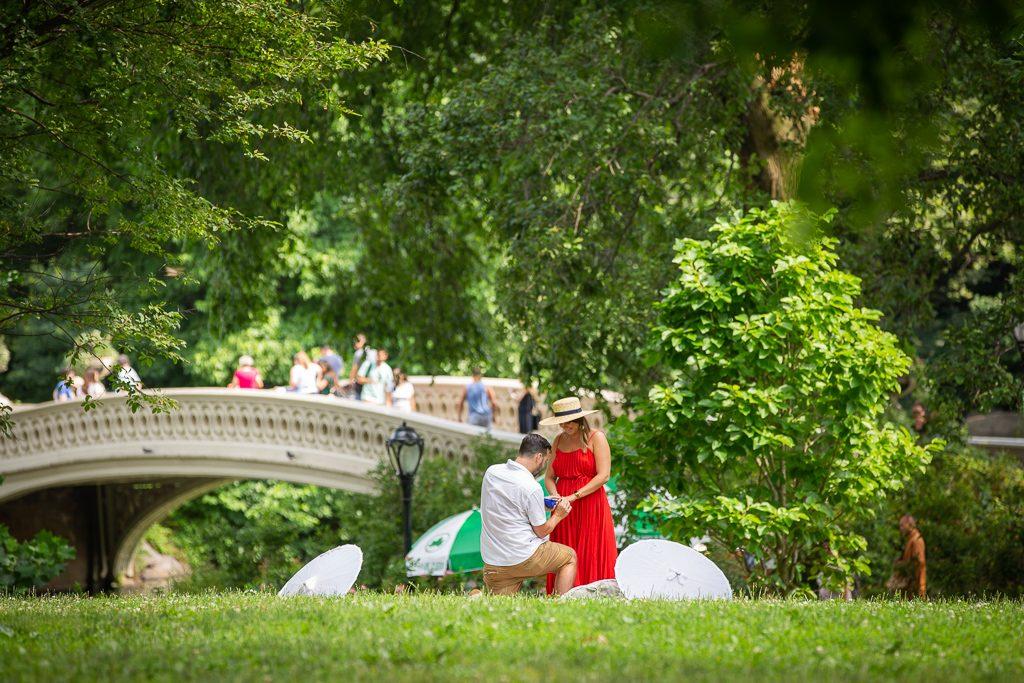 New York Picnic Engagement Proposals